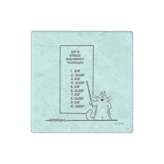 Time Management Stone Magnet