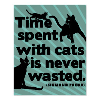 Time spent with cats is never wasted quote poster