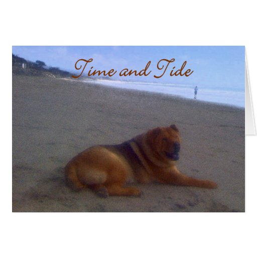 Time & Tide Greeting Card