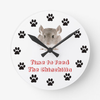 Time to feed the Chinchilla Round Clock