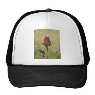 Timeless Love Shared Red Rose Bud Sparkle Cap