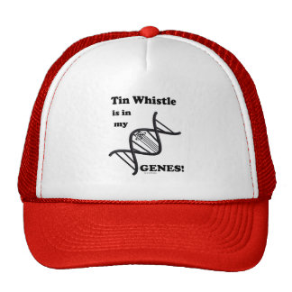 Tin Whistle in my Genes Trucker Hats