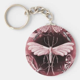Tineida - Mothes Key Chains