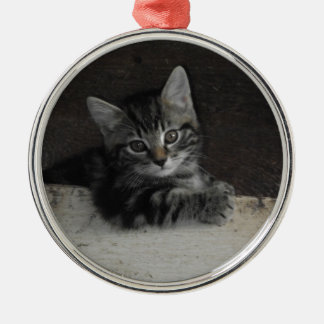 Tinker Kitten Christmas Ornament