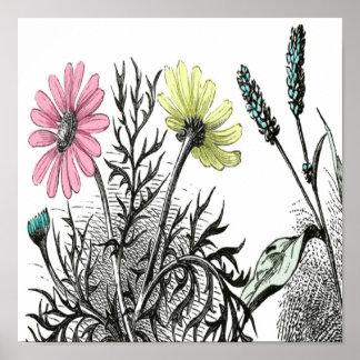 tinted flowers print