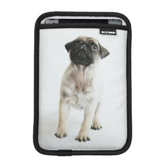 Tiny And Cute Pug Puppy iPad Mini Sleeve