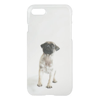 Tiny And Cute Pug Puppy iPhone 8/7 Case