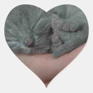 Tiny Baby Blue Kitten Heart Sticker