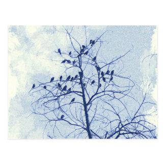 Tiny Birdies in the Treetop Postcard