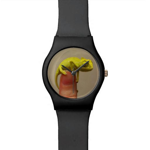 Tiny chameleon on a finger tip watch