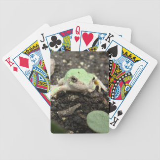 Tiny Frog Playing Cards