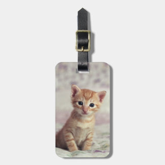 Tiny Ginger Kitten Luggage Tag