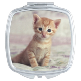 Tiny Ginger Kitten Vanity Mirror