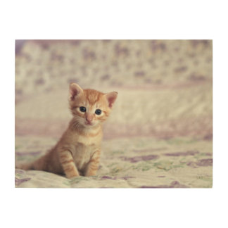 Tiny Ginger Kitten Wood Wall Decor