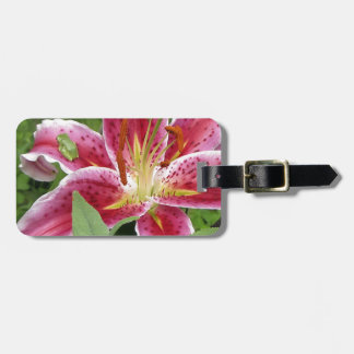 Tiny Green Frog on Stargazer Lily Luggage Tag