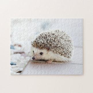 Tiny Hedgehog Puzzle