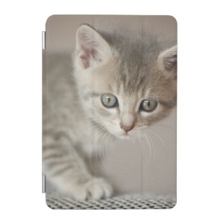 Tiny Kitten iPad Mini Cover