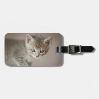Tiny Kitten Luggage Tag