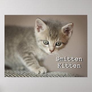 Tiny Kitten Poster
