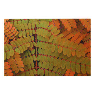Tiny Leaves Pattern Wood Canvases