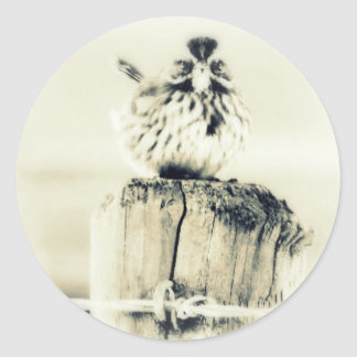 Tiny Little Backyard Bird Round Stickers