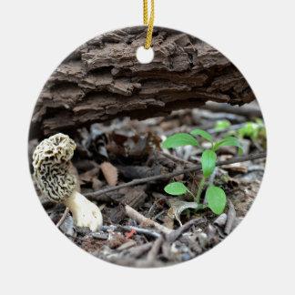 Tiny Morel Mushroom in the Woods Round Ceramic Decoration