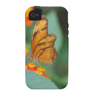 Tiny Orange Butterfly iPhone 4 Cover