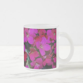 Tiny Pinks Frosted Glass Mug