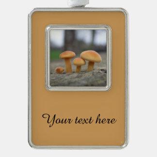 Tiny Toadstools Macro Custom Ornament Silver Plated Framed Ornament