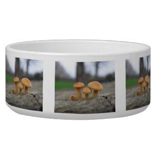 Tiny Toadstools Macro Pet Bowl
