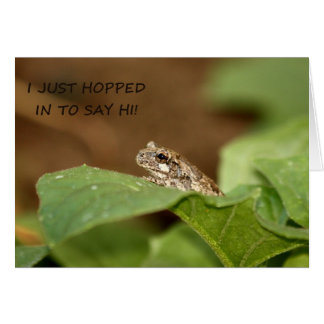 Tiny Tree Frog Hopping in to Say Hi Card