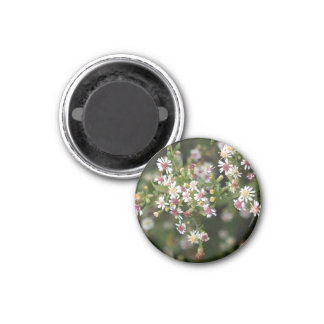 Tiny White Flowers 3 Cm Round Magnet