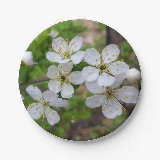 tiny white flowers paper plate