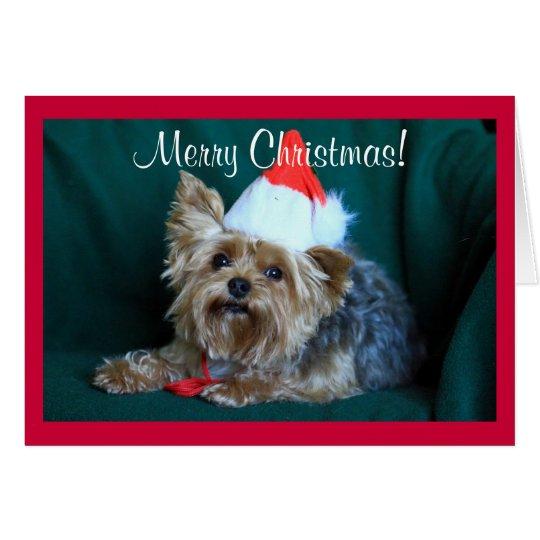 Tiny Yorkie in Santa Hat Card