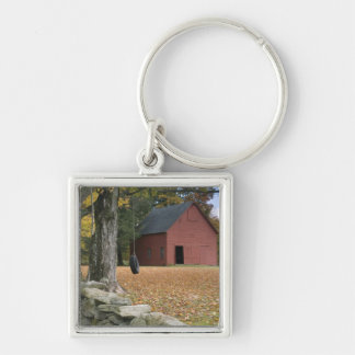 Tire swing along a road in Southern Vermont, Key Ring