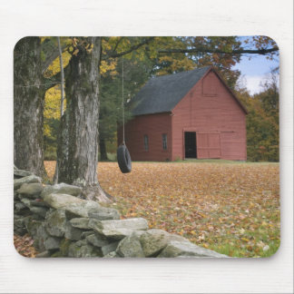 Tire swing along a road in Southern Vermont, Mouse Pad