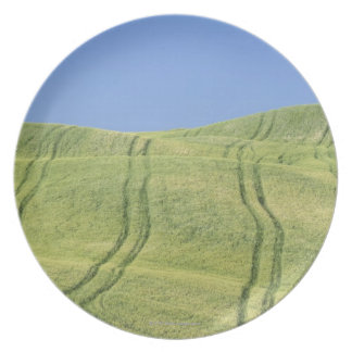 Tire Tracks in Wheat Field, Val d'Orcia, Siena Plate