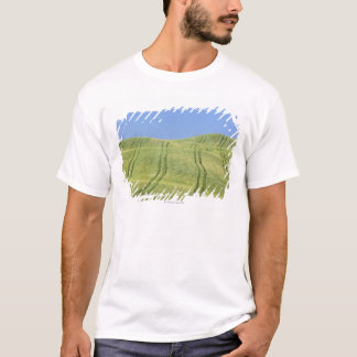 Tire Tracks in Wheat Field, Val d'Orcia, Siena T-Shirt