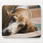 tired basset hound mouse pads