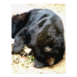 Tired Bear 21.5 Cm X 28 Cm Flyer