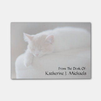 Tired Beige And White Kitten Sleeping On Ottoman Post-it Notes