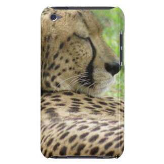 Tired Cheetah iTouch Case iPod Touch Cover