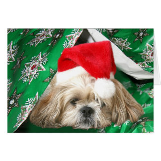 Tired Christmas Shih Tzu Card