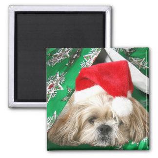 Tired Christmas Shih Tzu Square Magnet