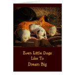 Tired Cowboy Puppies Greeting Card