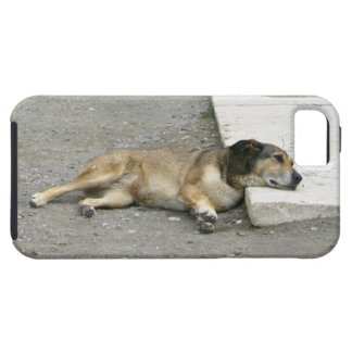 Tired Dog iPhone 5 case-mate