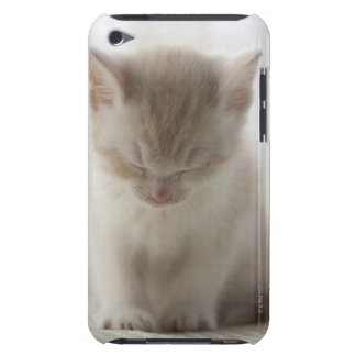 Tired Kitten Sleeping Barely There iPod Covers