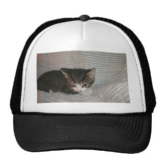 Tired Kitty Cap