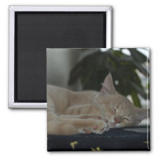 Tired Square Magnet