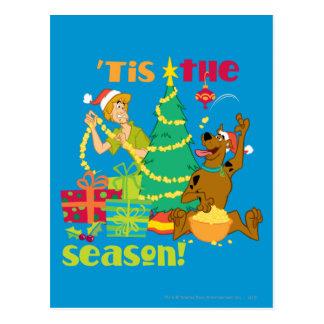 Tis' The Season Postcard
